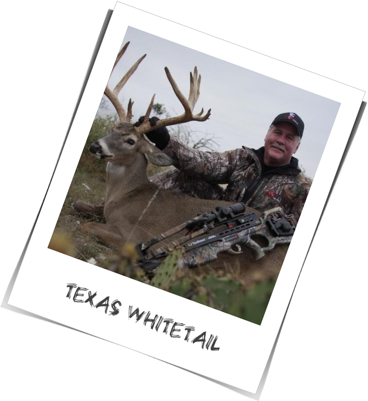 Doug Roberts - Texas Whitetail